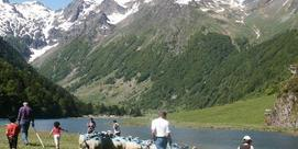 La Transhumance d'Estaing
