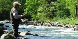 Matinée pêche