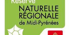 Comptage Isards -  Réserve Naturelle d'Aulon