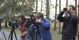 Images en direct de la caméra