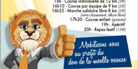 La Foulée des Lion's 2ème édition
