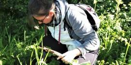 """Atelier """"Herboristerie familiale : 14 plantes de Printemps"""""""