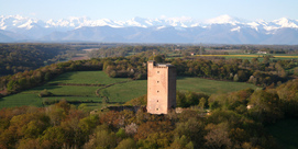Balade découverte du patrimoine naturel au Château de Montaner