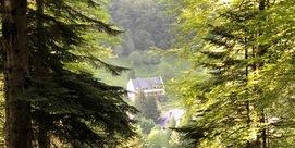 Venez faire un break en chambres d'hôtes made in Pyrénées :