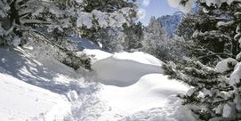 Néouvielle royaume des neiges