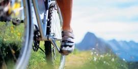 Mountain biking for softies