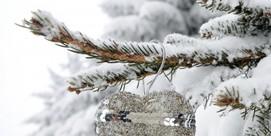Noël Blanc à Luz !