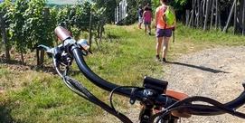 Vélo tout terroir