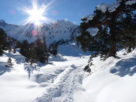 1-hiver1.jpg