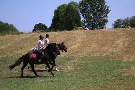 6-Sophie-de-Goyon---equestre.jpg