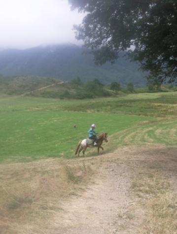 4-Balade-a-poney.jpg