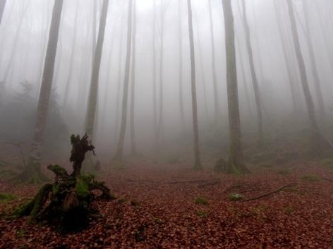8-photo-pibeste-argelesgazost-HautesPyrenees.jpg