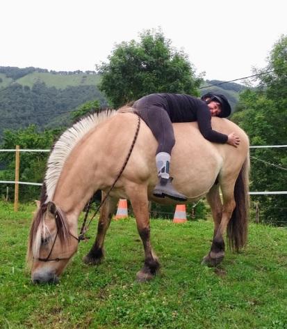 4-La-ferme-du-poney-fringuant.jpg