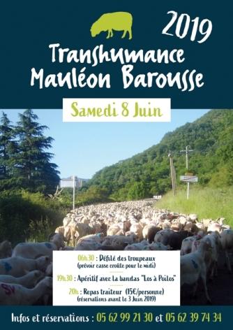 0-Transhumance-Mauleon-Barousse-2019.jpg