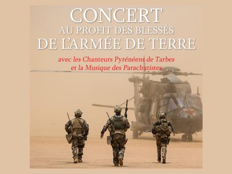 0-concert-blesses-armee-terre.jpg