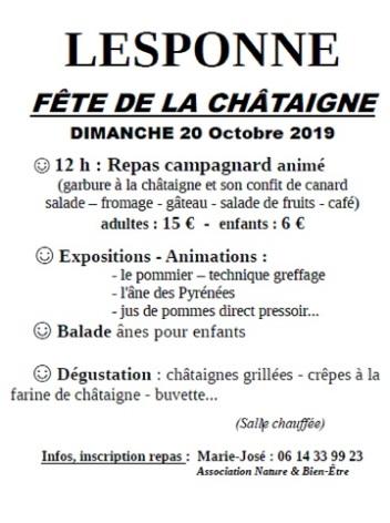 0-2019-10-20--Fete-de-la-chataigne-lesponne.jpg