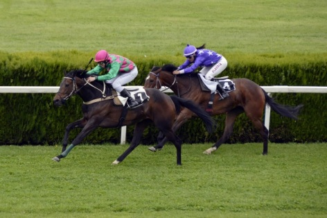0-course-chevaux.jpg