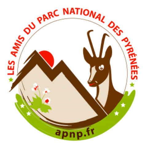 0-logo-apnp-quadri-e1527669866965.png