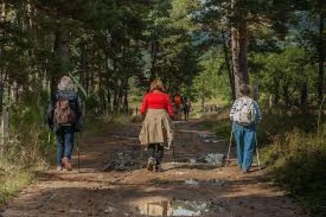 0-marcheurs-sur-chemin.jpg