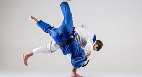 0-Tournoi-de-judo.JPG