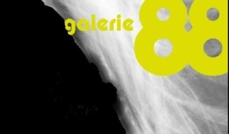 0-Galerie-88-5.JPG