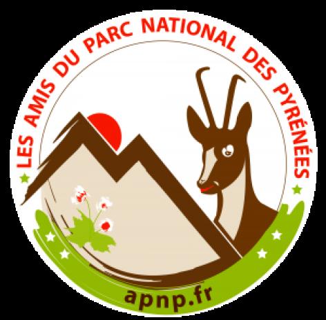 1-Logo-APNP.png