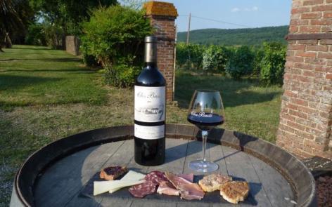 0-aperitif-vigneron-bio-clos-baste-moncaup-madiran-3.JPG