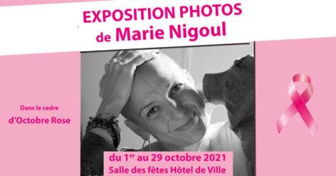 0-expo-nigoul-visuel-768x403.jpg
