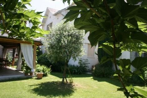 1-jardin-dessay2-pierrefittenestalas-HautesPyrenees.jpg.JPG