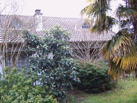 8-Jardin-5.jpg