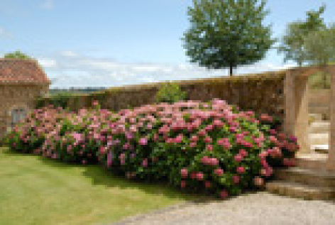 2-jardin-.jpg