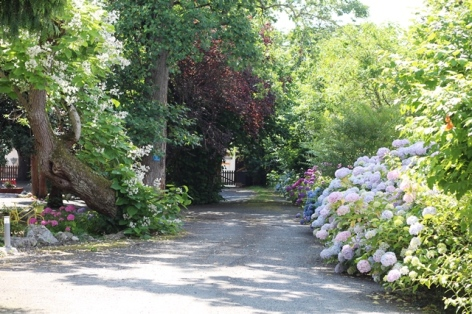 23-Chemin-du-bonheur-Villa-Corina..JPG