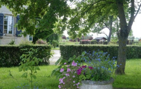 0-jardin-46.jpg