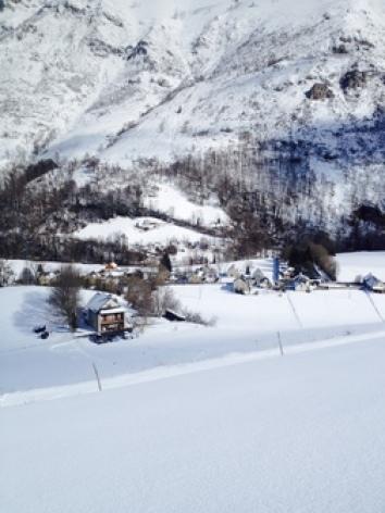 6-carot-et-autour-sous-la-neige.jpg