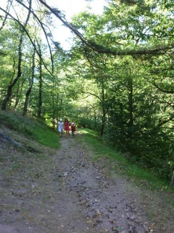 16-HPM13-Chalet-Nordique-FrechetAure-randonnee.JPG