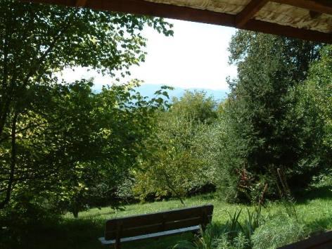 2-Cabin-view.jpg