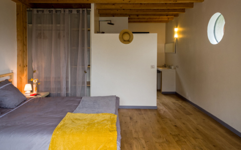 4-chambre-delrieu-arcizansavant-HautesPyrenees.jpg