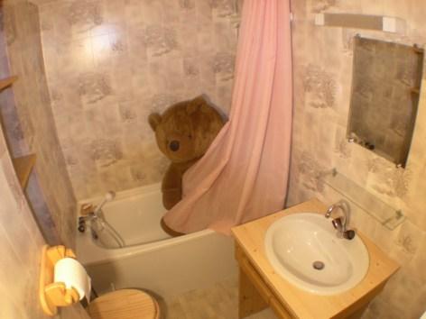 7-06-salle-bain--Copier-.JPG