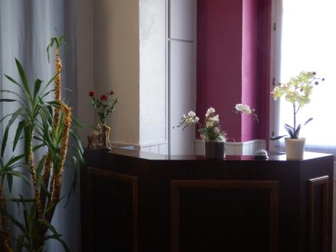 1-reception-argeles-HautesPyrenees.jpg.JPG