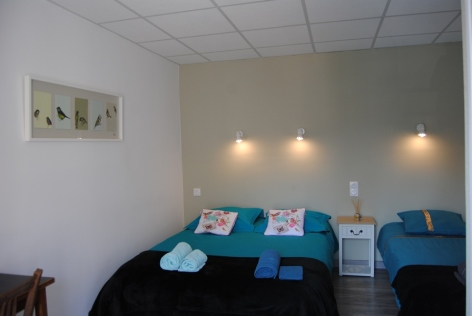 12-Lourdes-hotel-Sainte-Therese-2-etoiles--55-.JPG