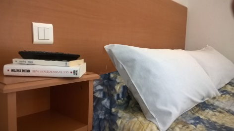 7-Lourdes-hotel-Compostelle--7--2.jpg