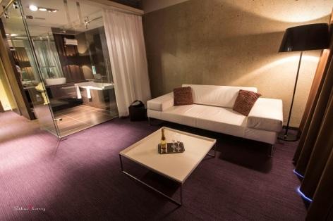 21-HPH19---HOTEL-LE-REX---TARBES---Suite-partie--2.JPG