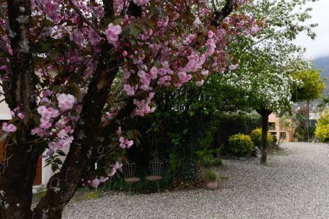 13-SIT-Hotel-Gare-Pierrefitte-Hautes-Pyrenees--16-.jpg