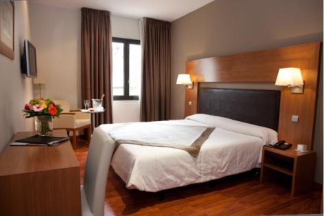 2-HPH156---HOTEL-ALTI---LUCHON---Chambre-Standard-2.PNG