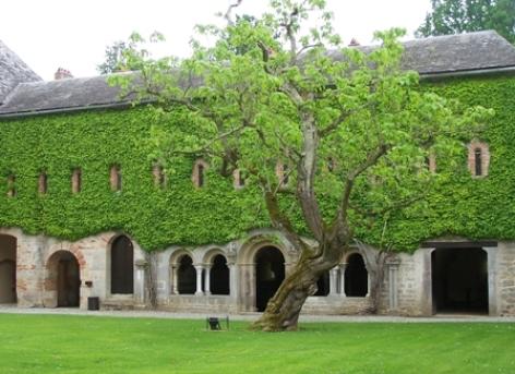 0-Abbaye-Escaladieu---CDRP65.jpg