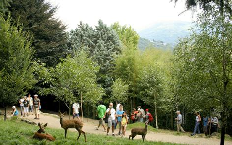 2-2016-parc-animalier-pyrenees-11-argeles-gazost.jpg