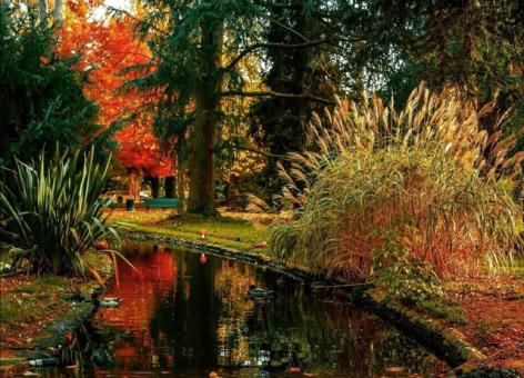 6-jardin-massey-automne.jpg