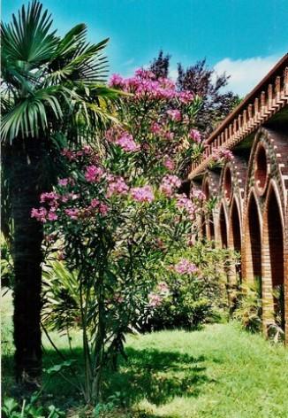 1-Abbaye-Notre-Dame-de-l-Esperance---Tarasteix---cloitre.jpg