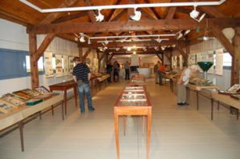 1-bagneres-museum-histoire-naturelle.jpg