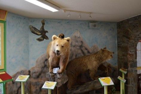 0-Maison-de-l-ours-ODT-LD--3-WEB.jpg